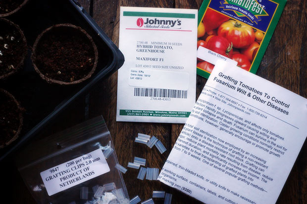 first-seeds-4-022313
